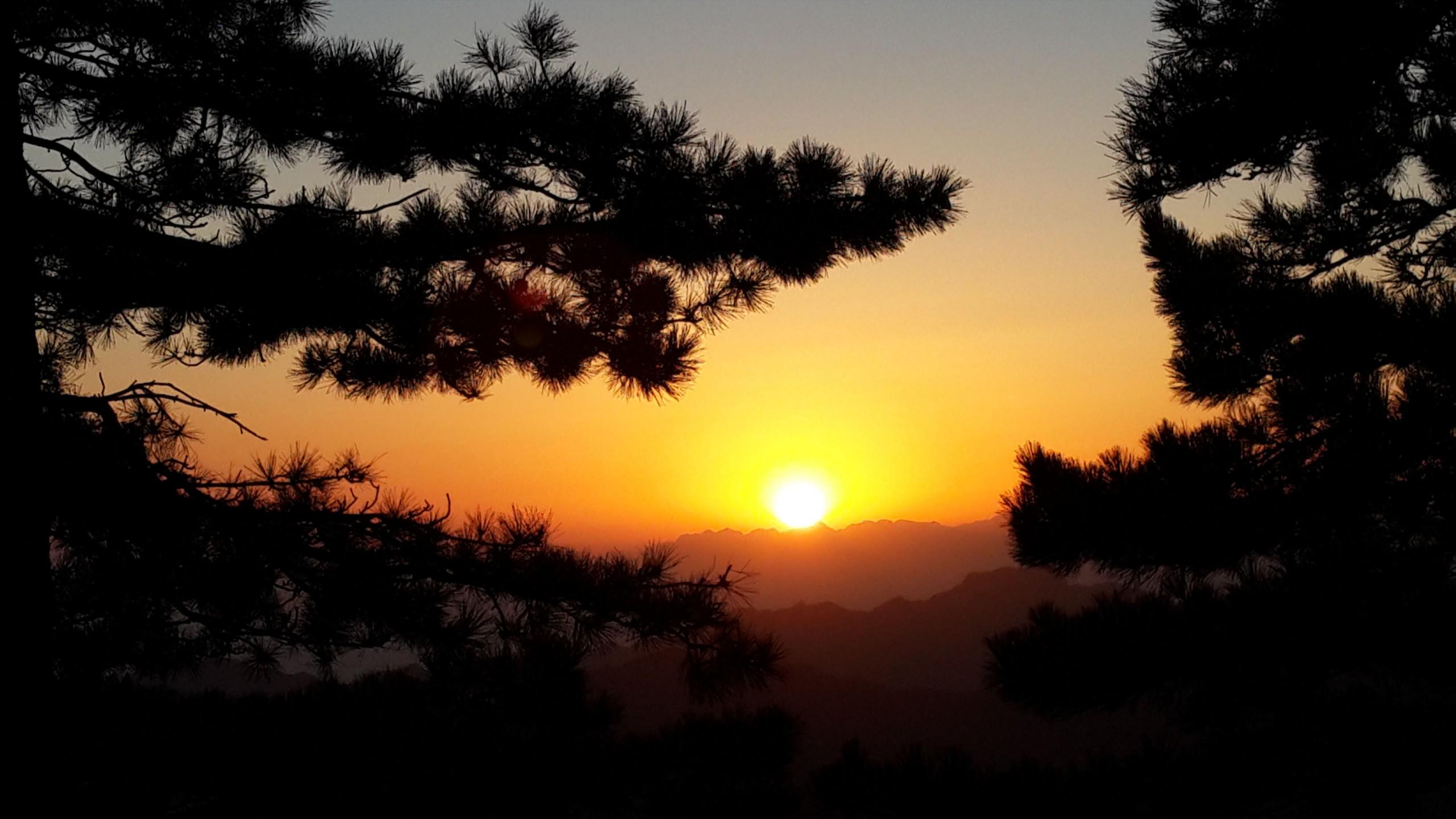 初升的太阳