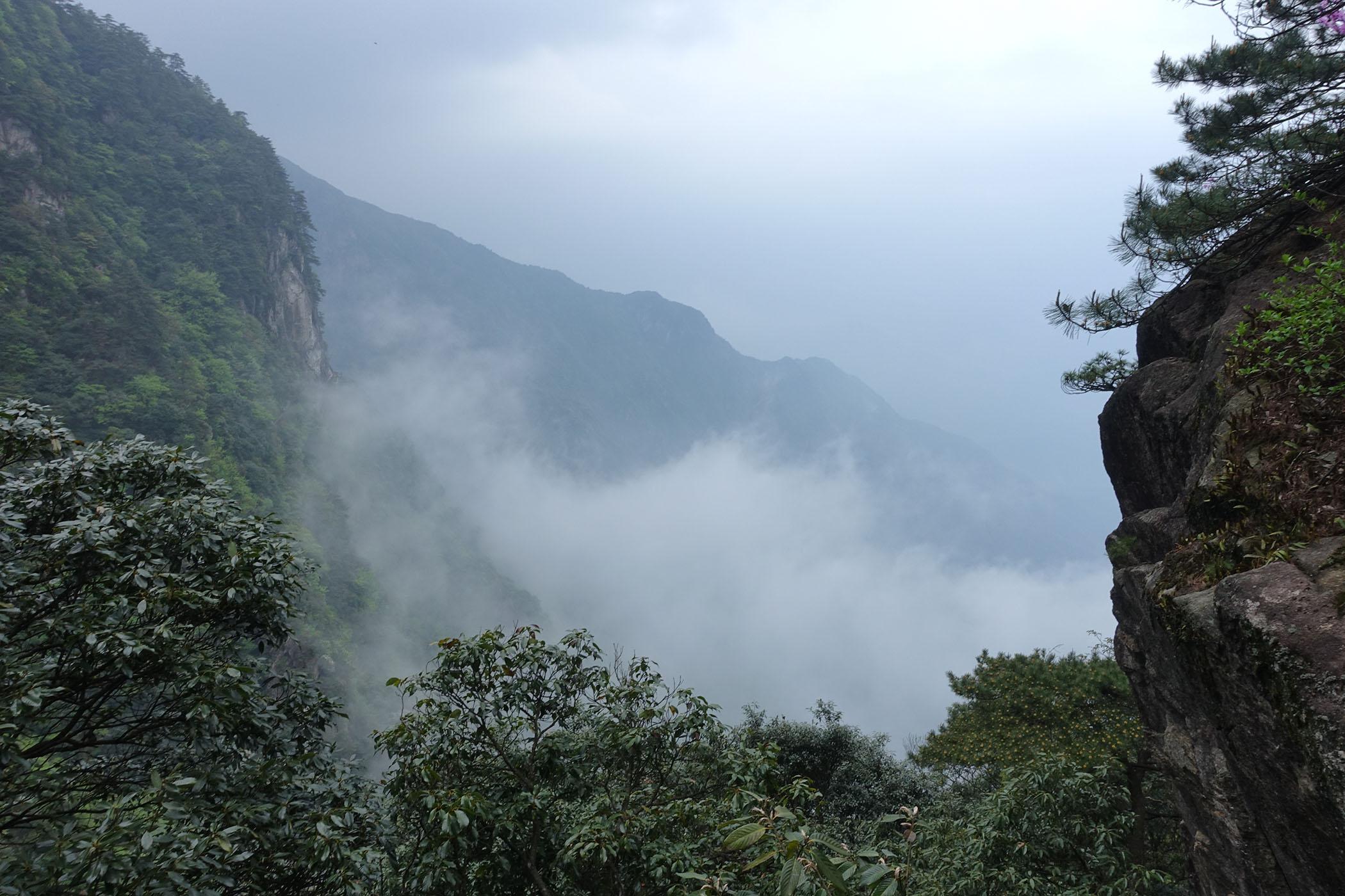 武功山起雾了