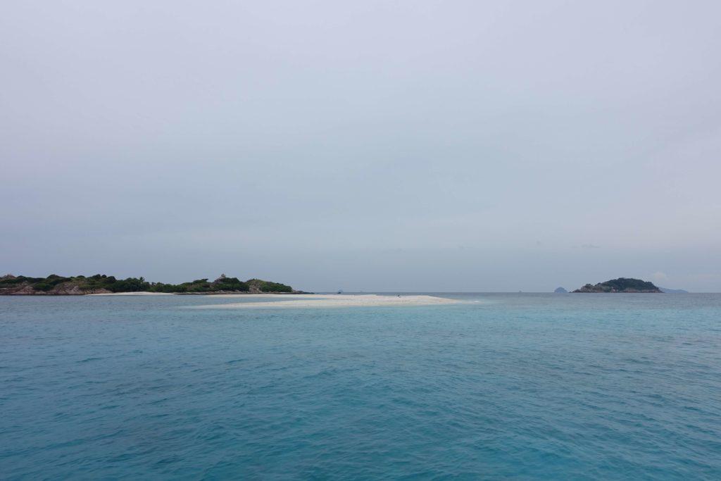 海岸边的珊瑚坟墓
